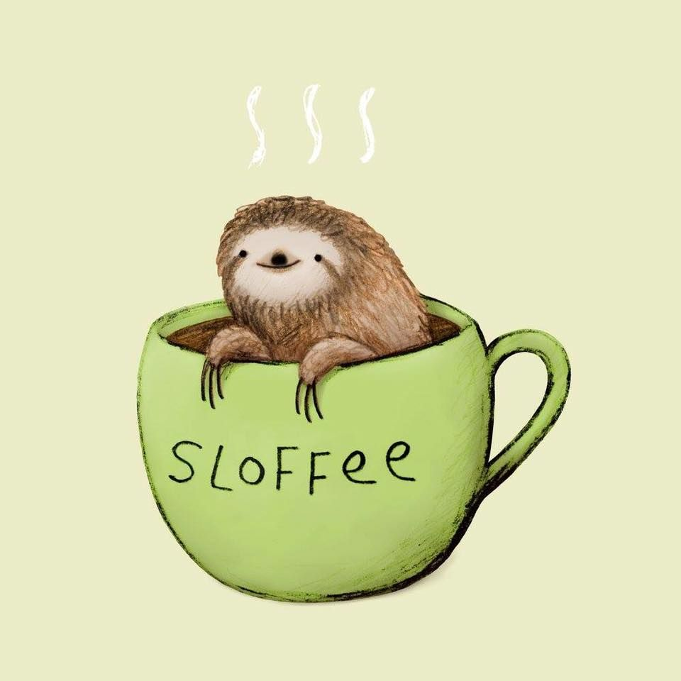 960x960 A Damned Adorable Sloth And Coffee