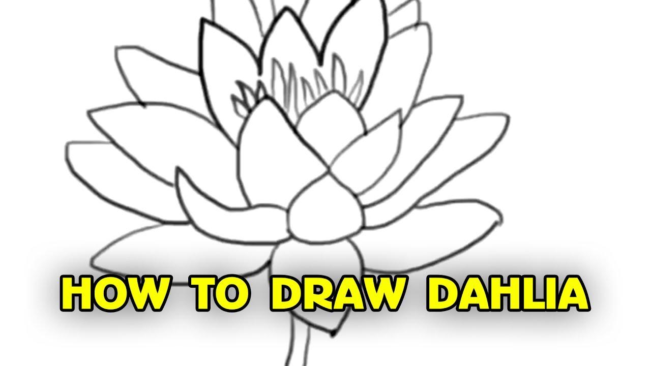 1280x720 Free Tutorial, How To Draw Dahlia
