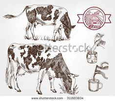 236x208 Cow. Cow Sketch. Dairy Cow Pencil Sketch. Animal Farm Cow