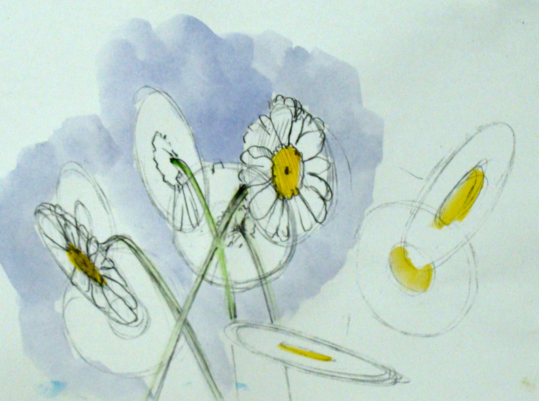Daisy Flower Line Drawing : Daisy drawing at getdrawings free for personal use