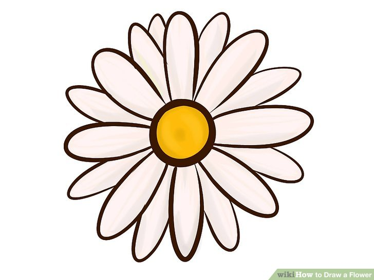 728x546 Gallery Simple Daisy Drawing,