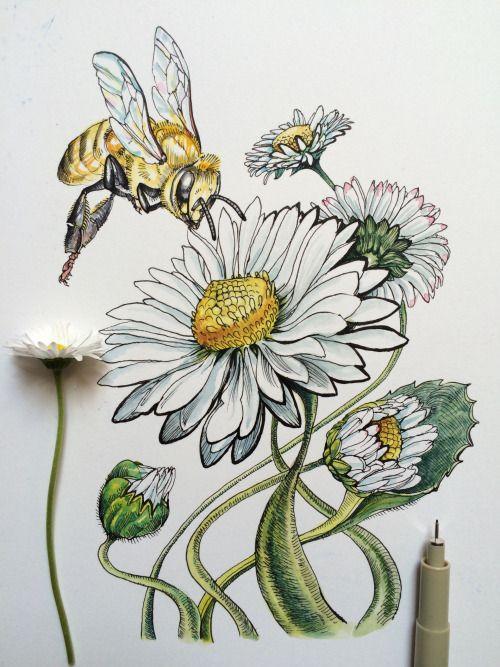 500x667 Badges Botanicals Daisies, Noel
