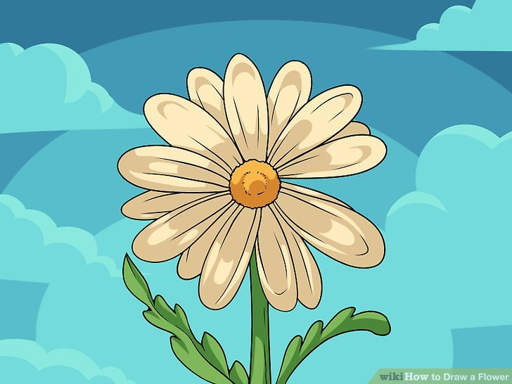 728x546 9 Easy Ways To Draw A Flower