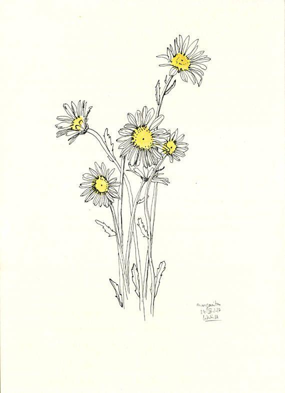 570x787 Daisy Print