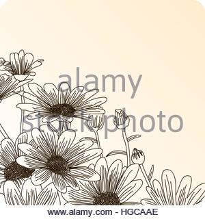 300x320 Sketch Contour Of Hand Drawing Daisy Flower With Several Petals
