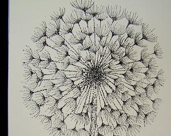 340x270 Dandelion Drawing Etsy