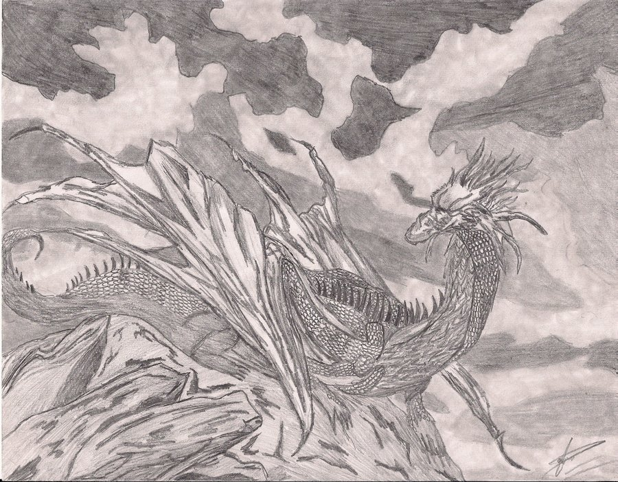 900x702 Dark Dragon Drawing Ddd By Predator11