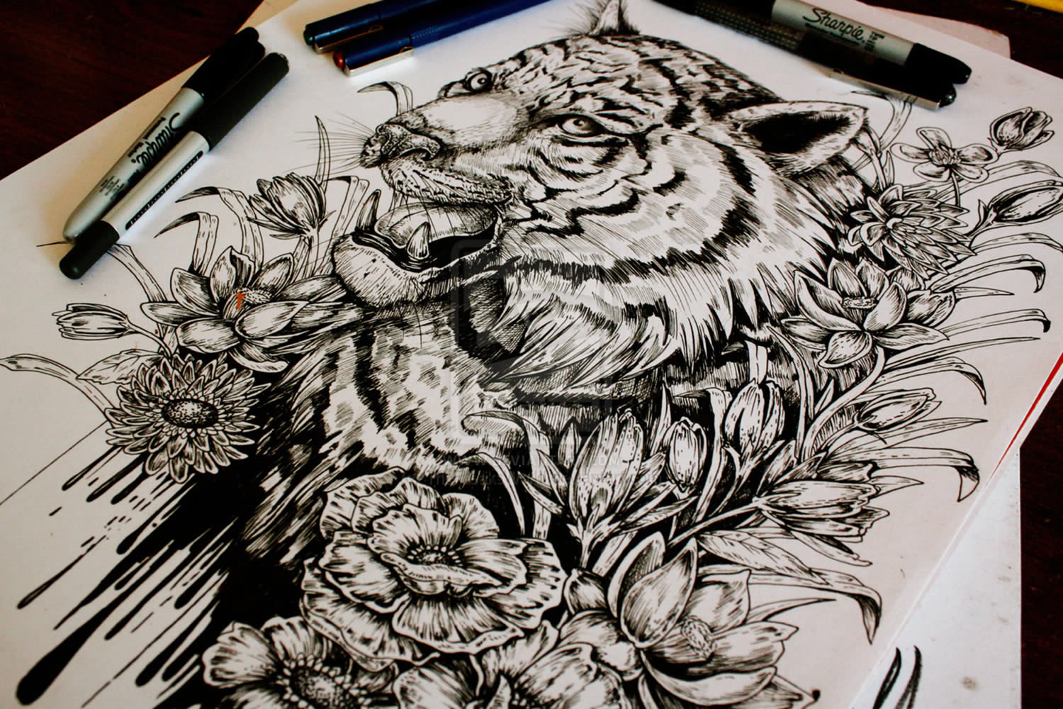 1500x1000 Tiger Drawing By E.g. The Freak Illustration Drawing