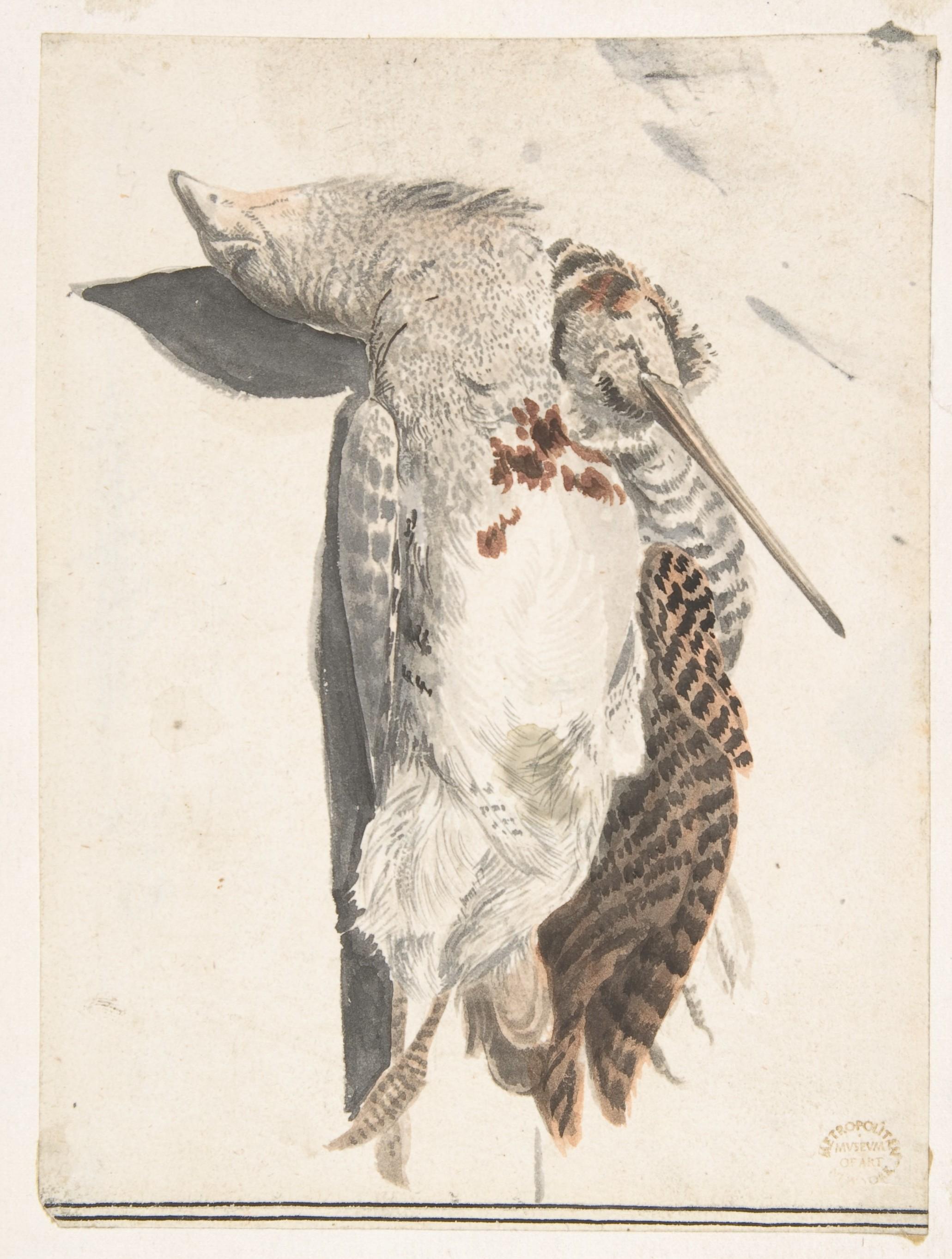 2061x2726 Count Giorgio Durante (Duranti) Two Dead Birds (A Quailnd