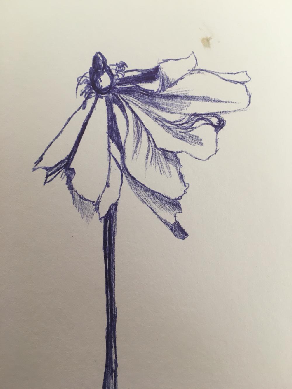 1000x1334 Wilting Flower