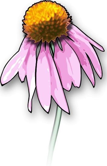 354x546 Dead Flower Clip Art Free Vector In Open Office Drawing Svg ( Svg