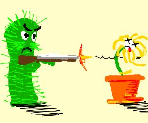 300x250 Cactus Shooting A Dead Plant