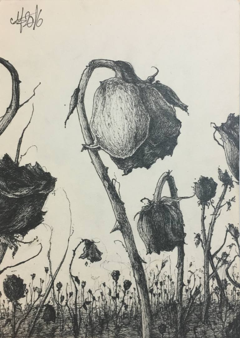 770x1084 Saatchi Art Dead Roses Drawing By George Muscalu