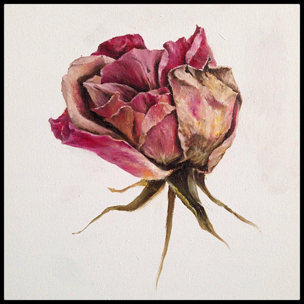 1024x1024 Rose By Vangoghtattoo