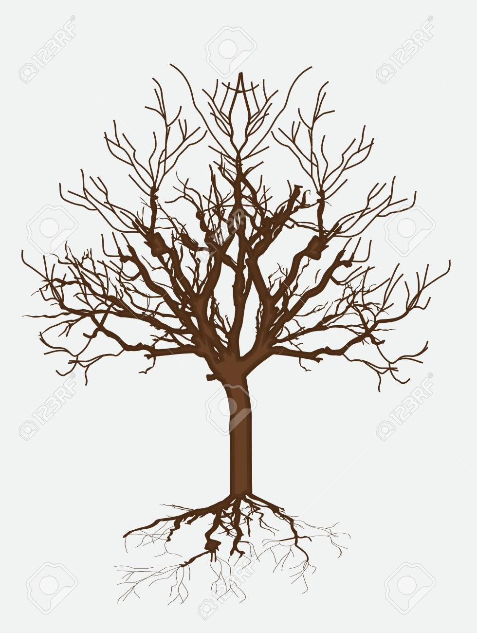 980x1300 Dead Tree Drawing Royalty Free Cliparts, Vectors, And Stock