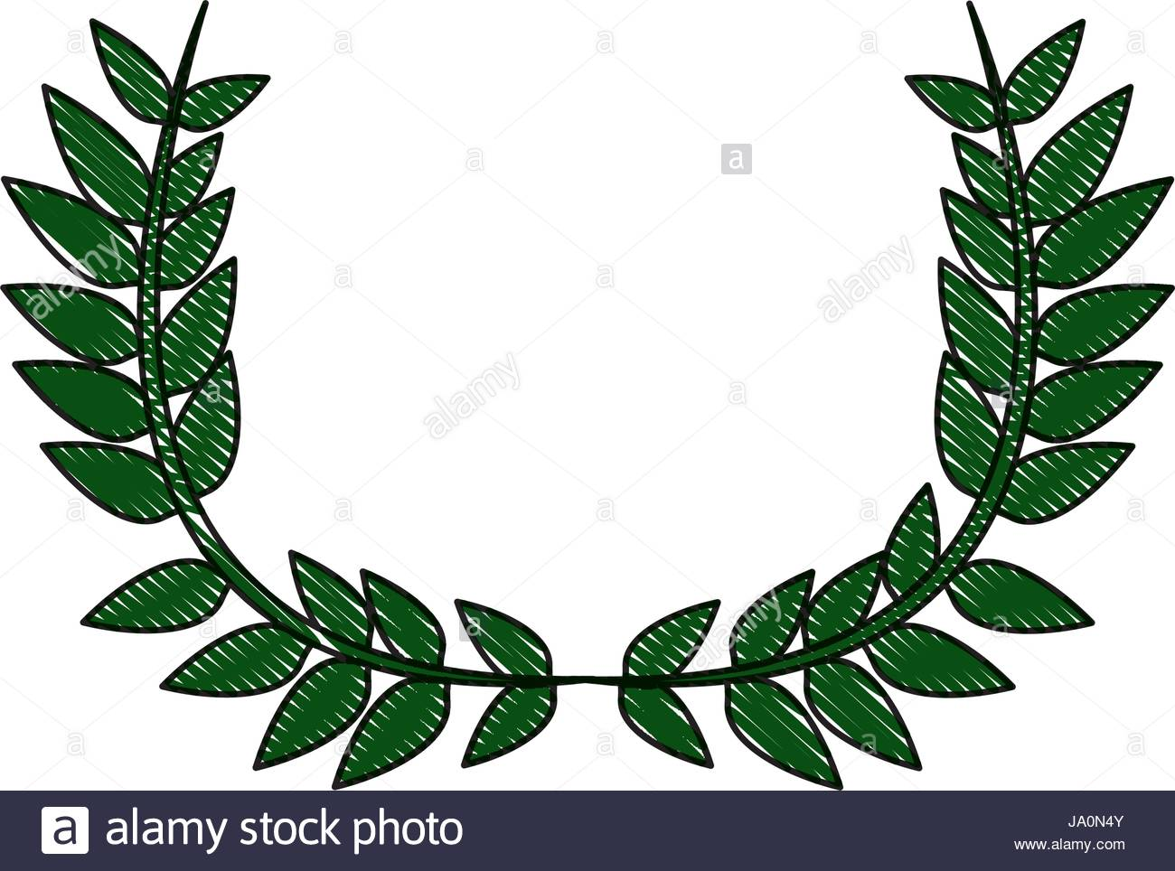 1300x964 Drawing Crown Half Flower Natural Decoration Laurel Leaves Stock