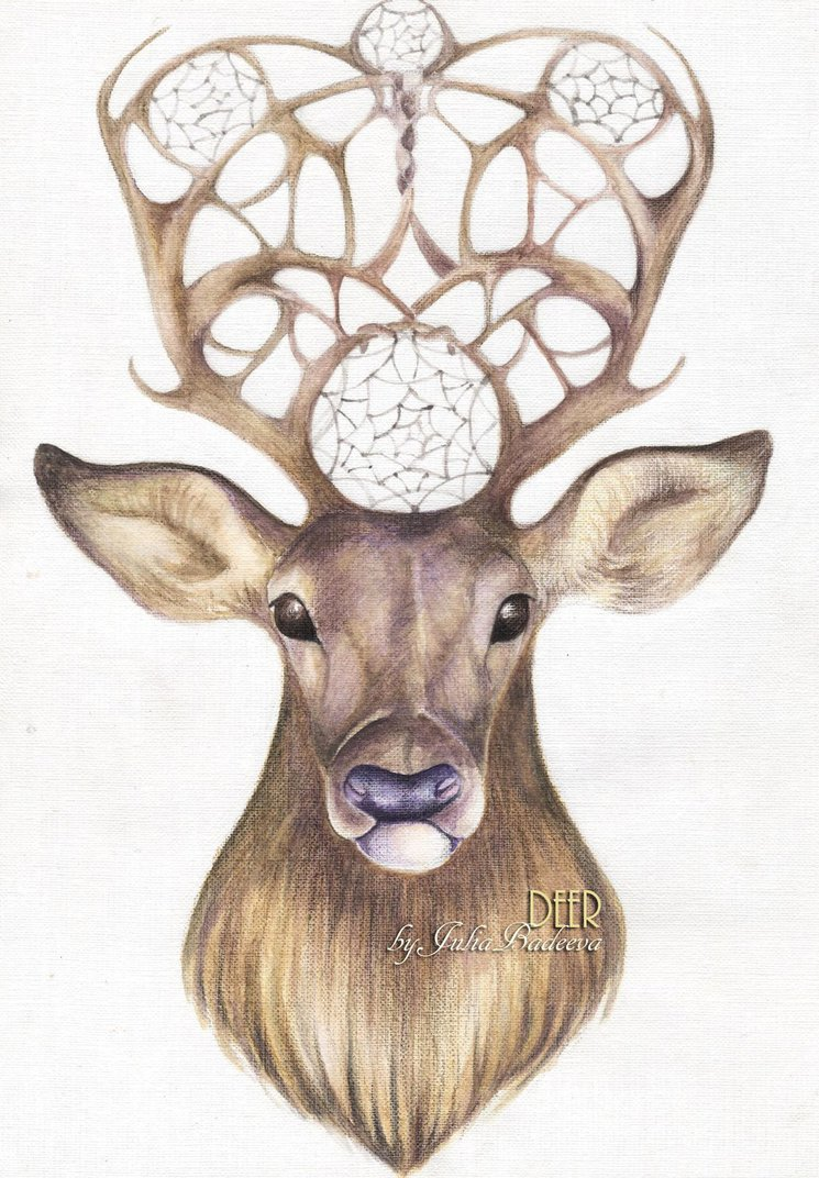 745x1072 Deer Pencil Drawing By Juliabadeeva