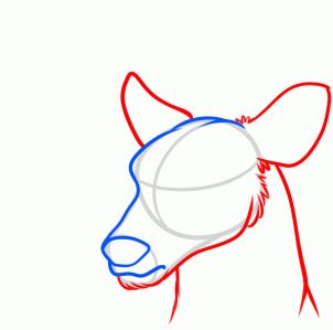 302x299 How To Draw A Deer Head How To Drawings, Death Art