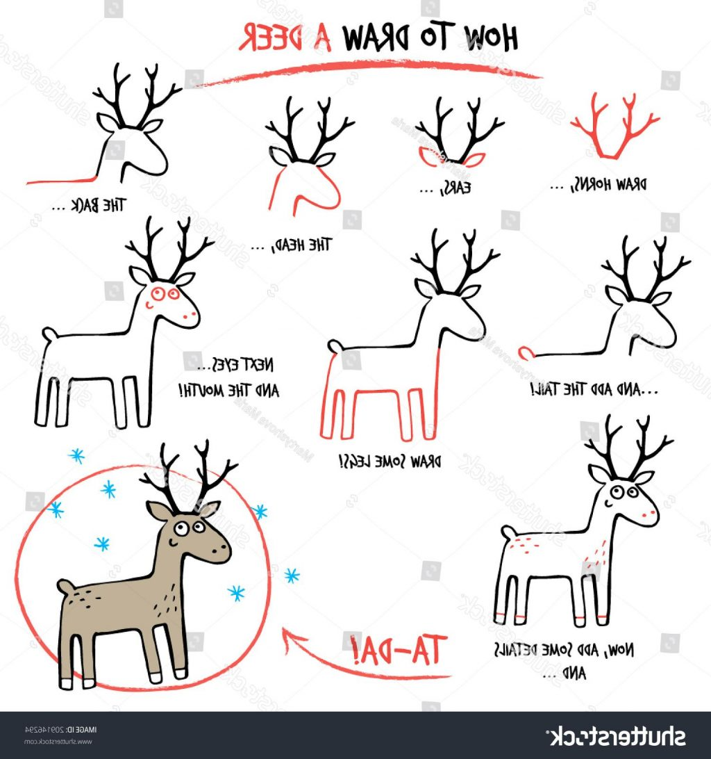 1024x1092 Top 10 Stock Vector Drawing Tutorial How To Draw Deer Step By