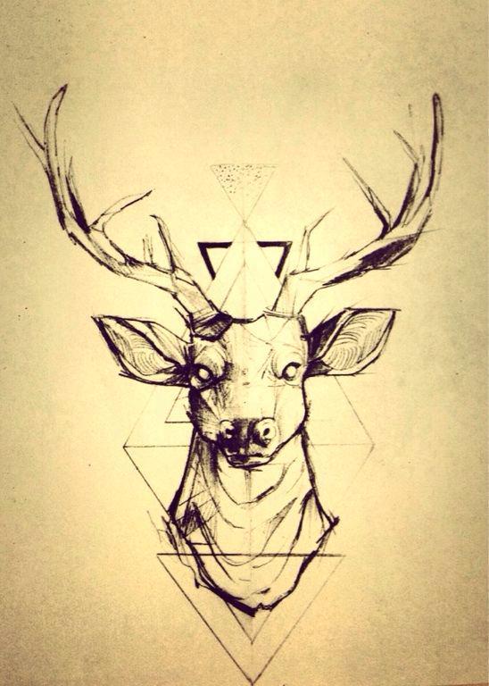 548x768 Geometric Deer Head Geometric Deer Head Drawing