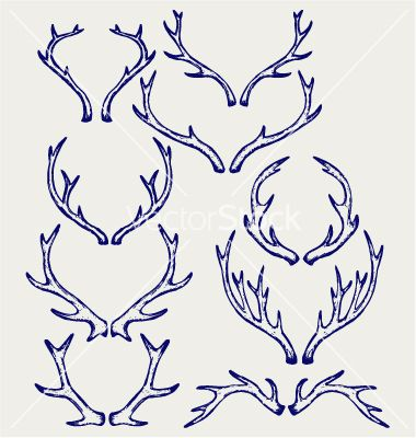 380x400 Deer Horns Vector By Kreatiw On Animals Amp Wildlife