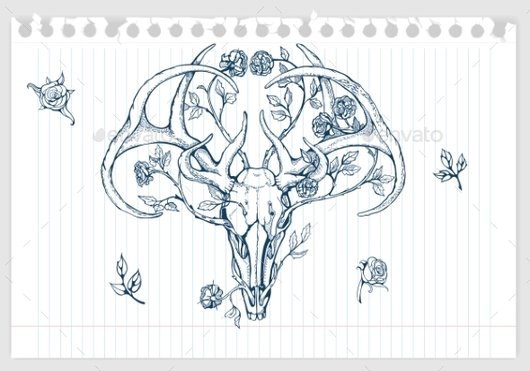590x413 Drawing Of Deer Skull With Horns Decorated By Nadiiaz Graphicriver