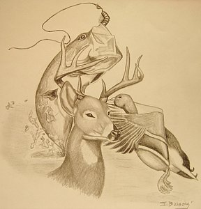 288x300 Deer Hunting Drawings