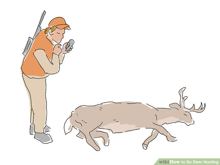 728x546 How To Go Deer Hunting (With Pictures)