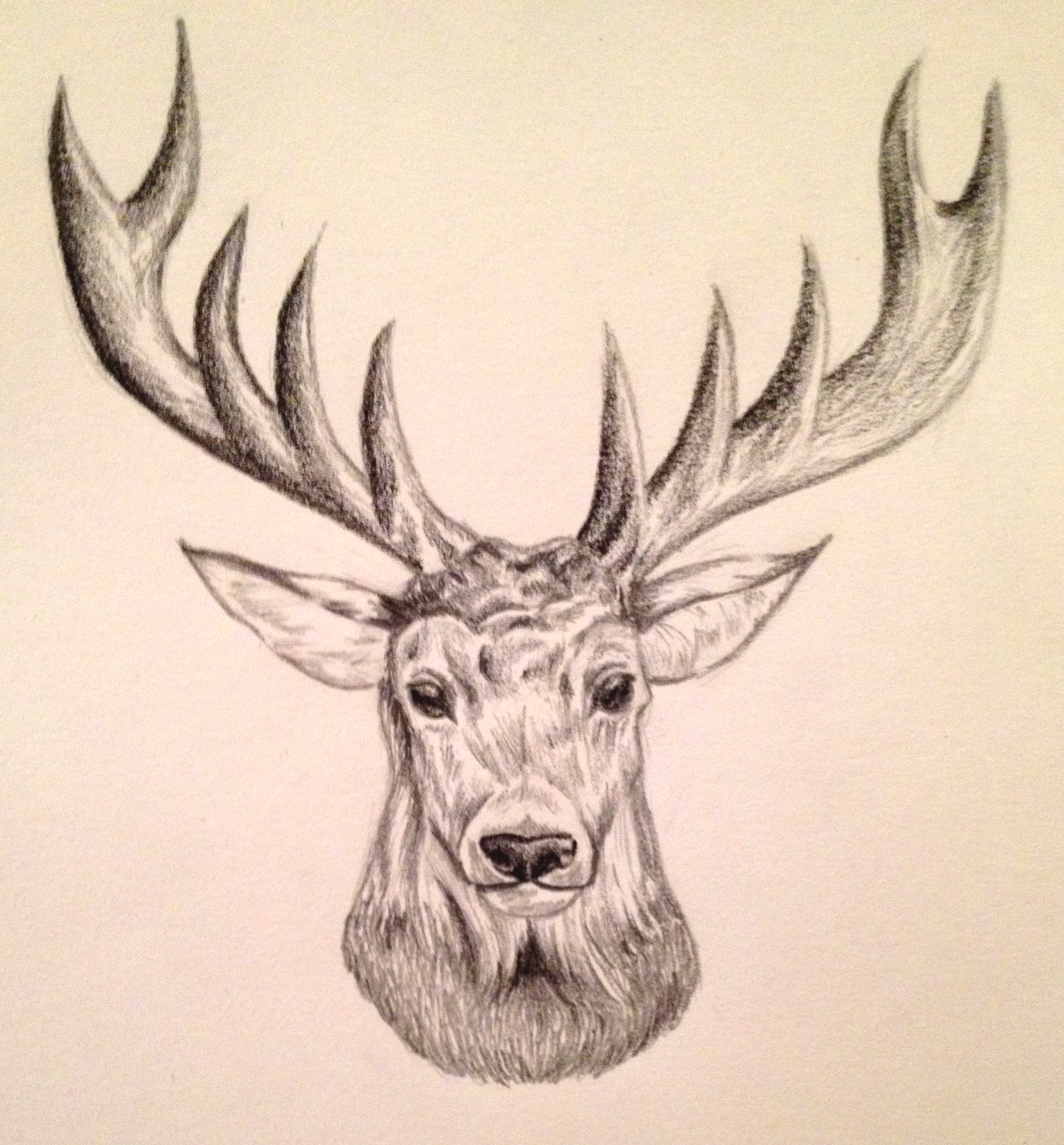 2357x2538 it39s christmas my deer animal drawings sketches and draw