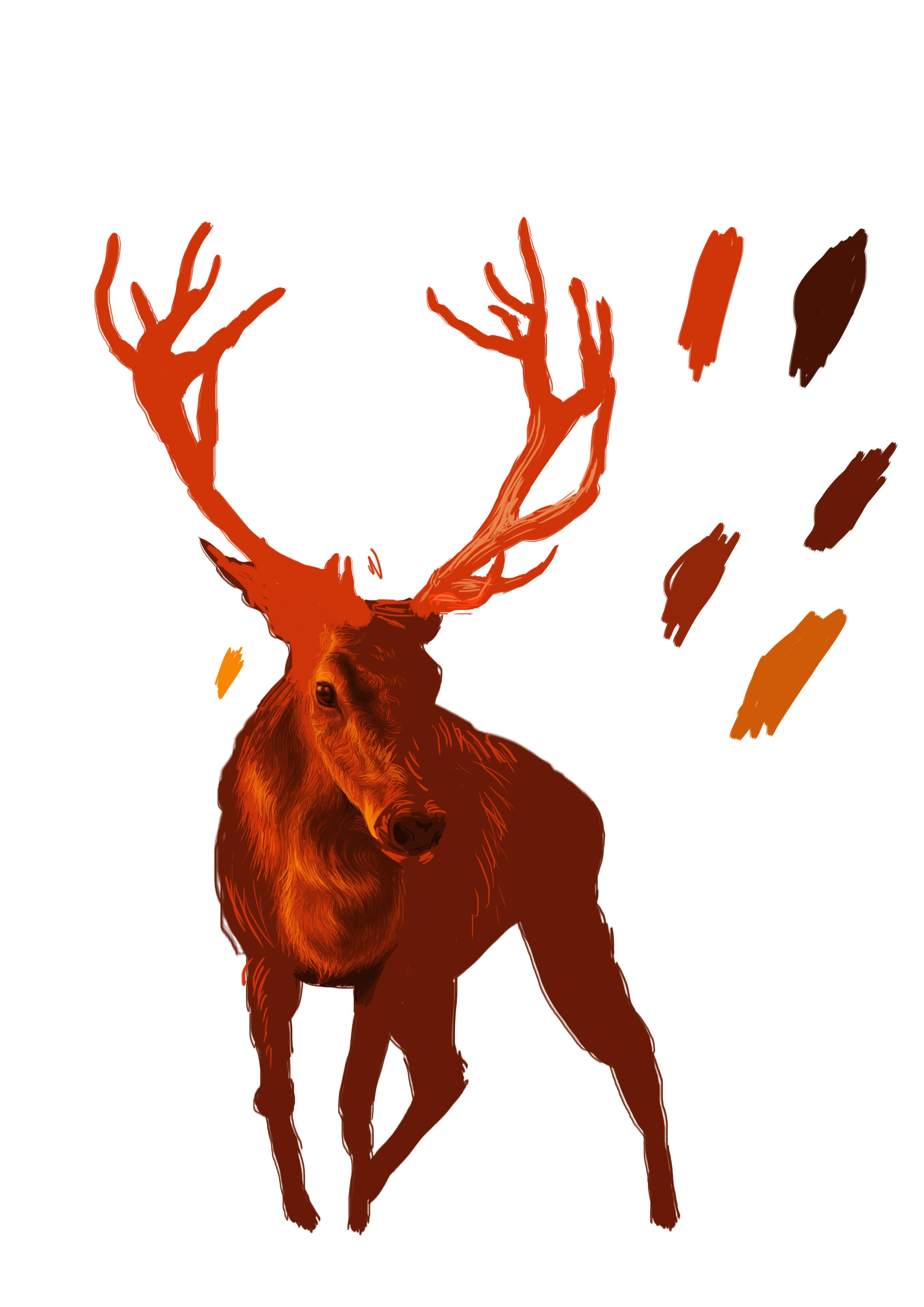 3508x4961 Digital Deer Drawing Josh Thompson Illustration