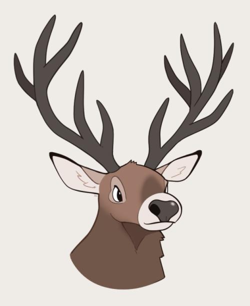 500x611 Red Deer Drawing Tumblr
