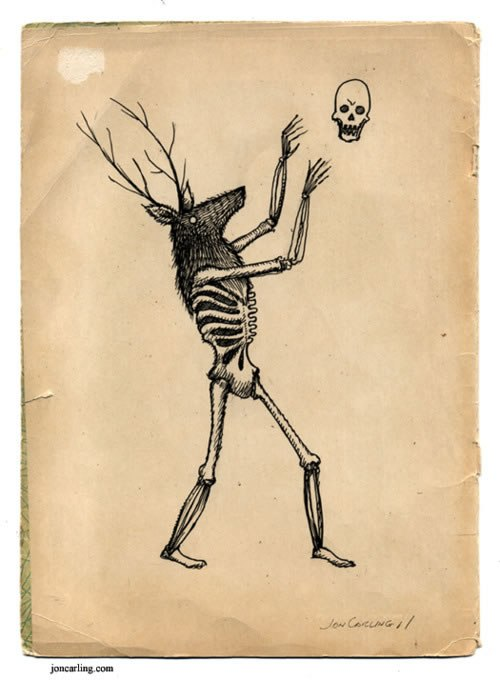 500x680 Deer Skeleton Jon Carling
