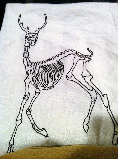 478x640 Deer Skeleton Skeletons, Skeleton Drawings And Animal Skeletons