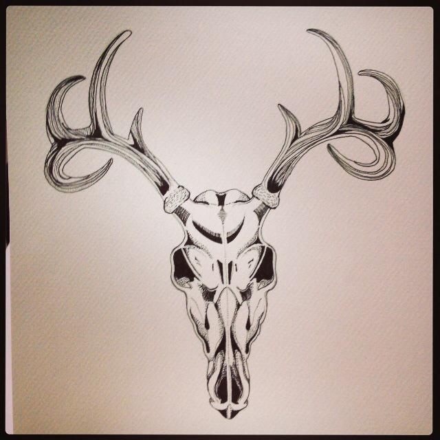 640x640 Deer Skull Drawing Done In Ink Pen Art Is For Winners