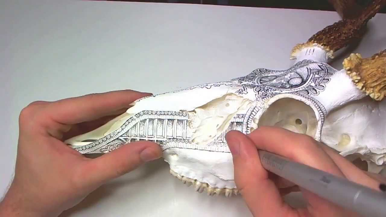 1280x720 Drawing On A Deer Skull