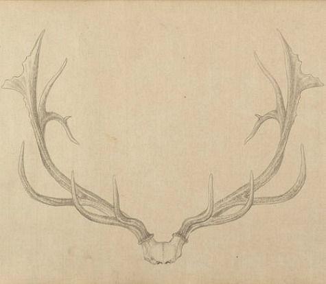 475x414 Qianlong Emperor, Painting Of Deer Antlers (1762 67) The White