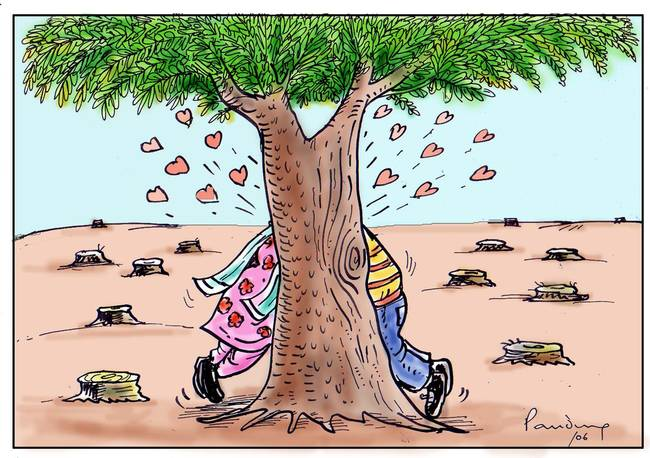 afforestation and deforestation Afforestation and deforestation by rmshanmugam chettiar trees are felled for thousands of reasons reasons are not sought to plant a tree.