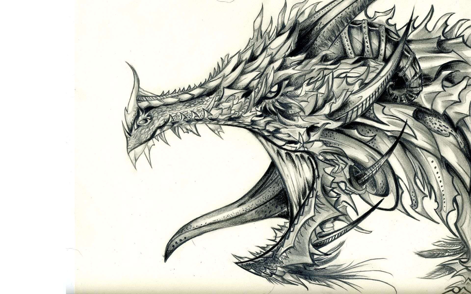 1920x1200 Dragon Drawing Wallpaper For Pc