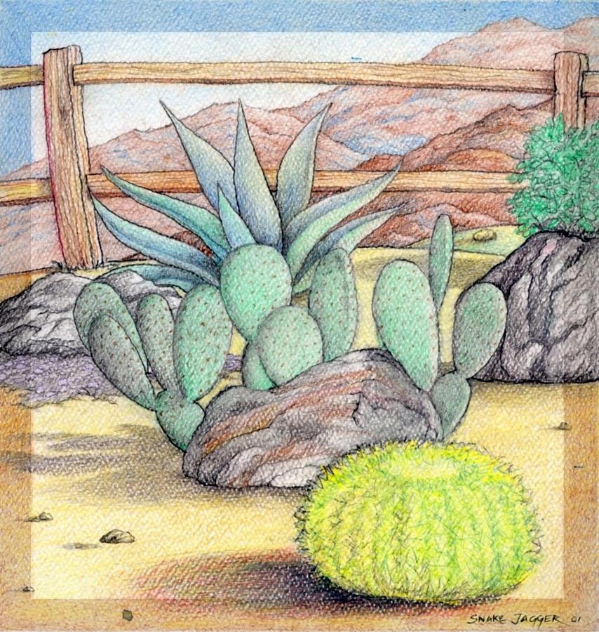 854x900 Living Desert Drawing By Snake Jagger
