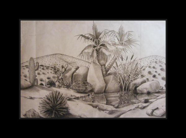 600x446 Desert Drawing By Deviantmike423