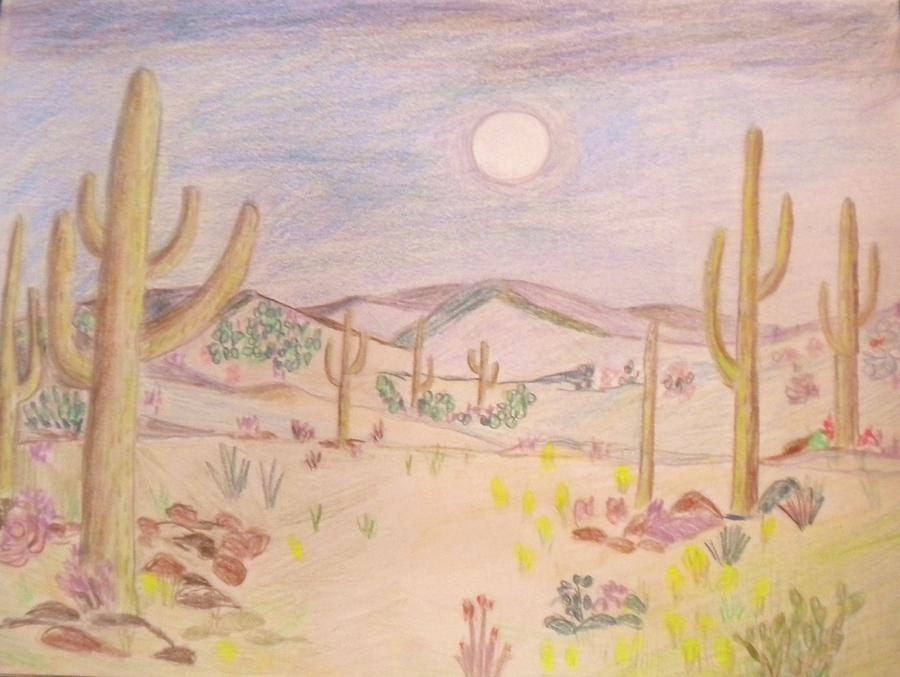 900x677 Mojave Desert 1 Drawing By Victoria Hasenauer