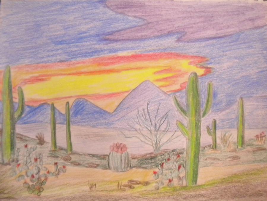 900x679 Mojave Desert Drawings Fine Art America