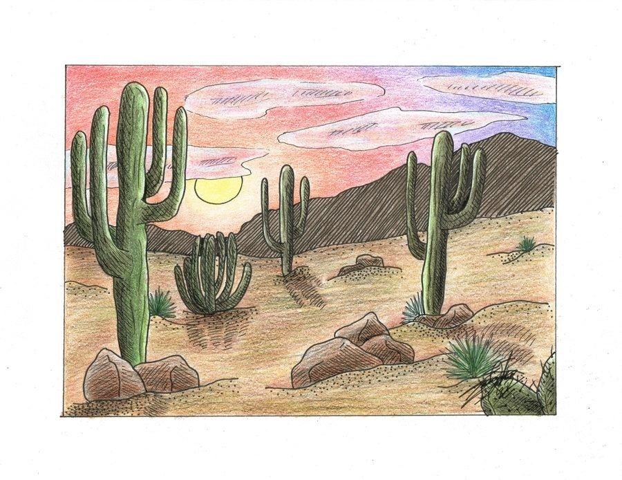 900x694 Desert Landscape Drawings Simple Living Tree In The World Places