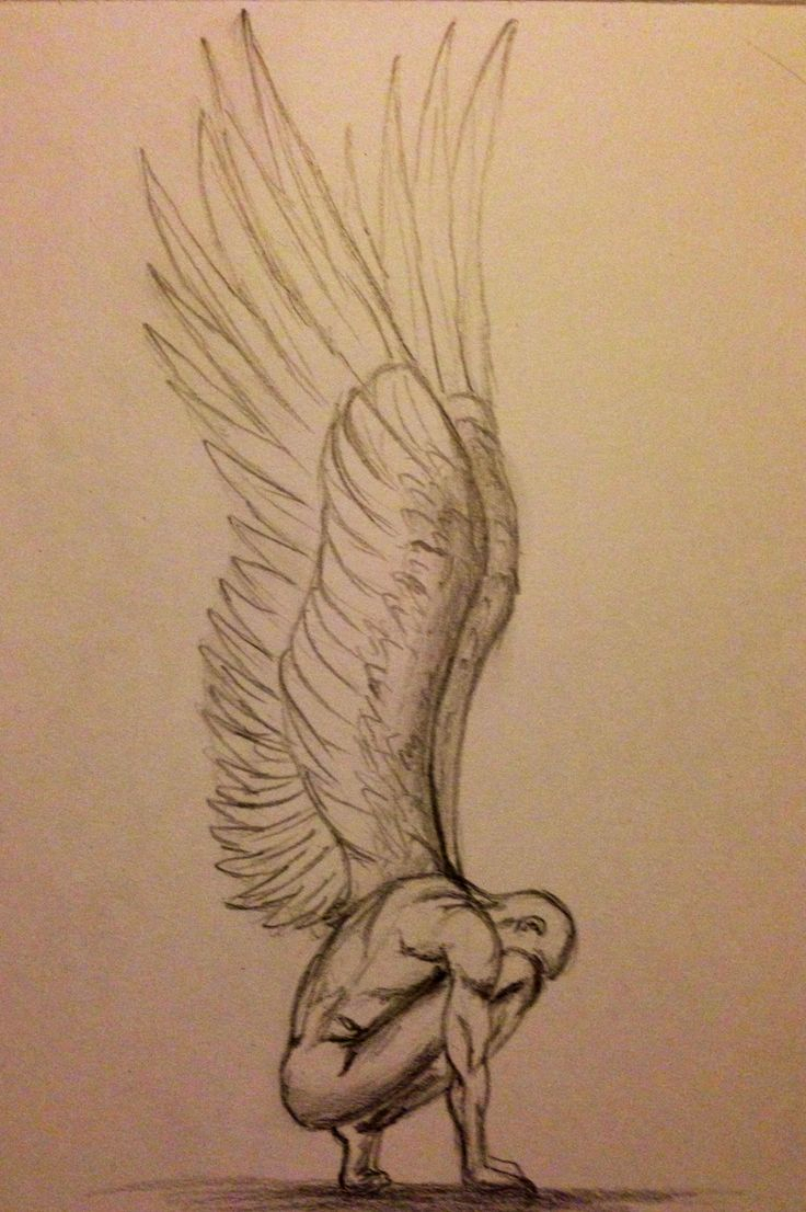 736x1106 Drawing Of Angel Drawn Angel Detailed