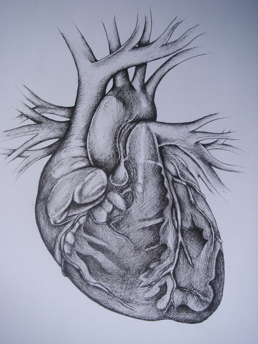 Detailed Heart Drawing at GetDrawings.com | Free for personal use ...