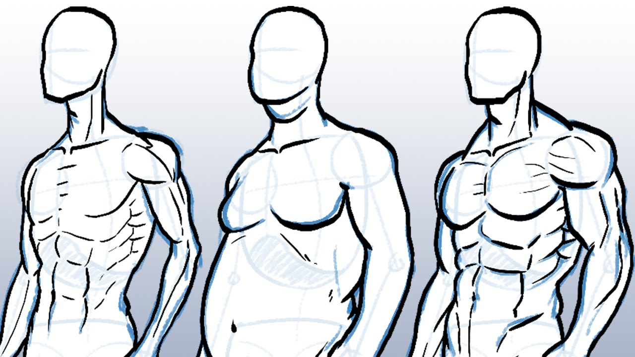 1280x720 How To Draw Different Body Types