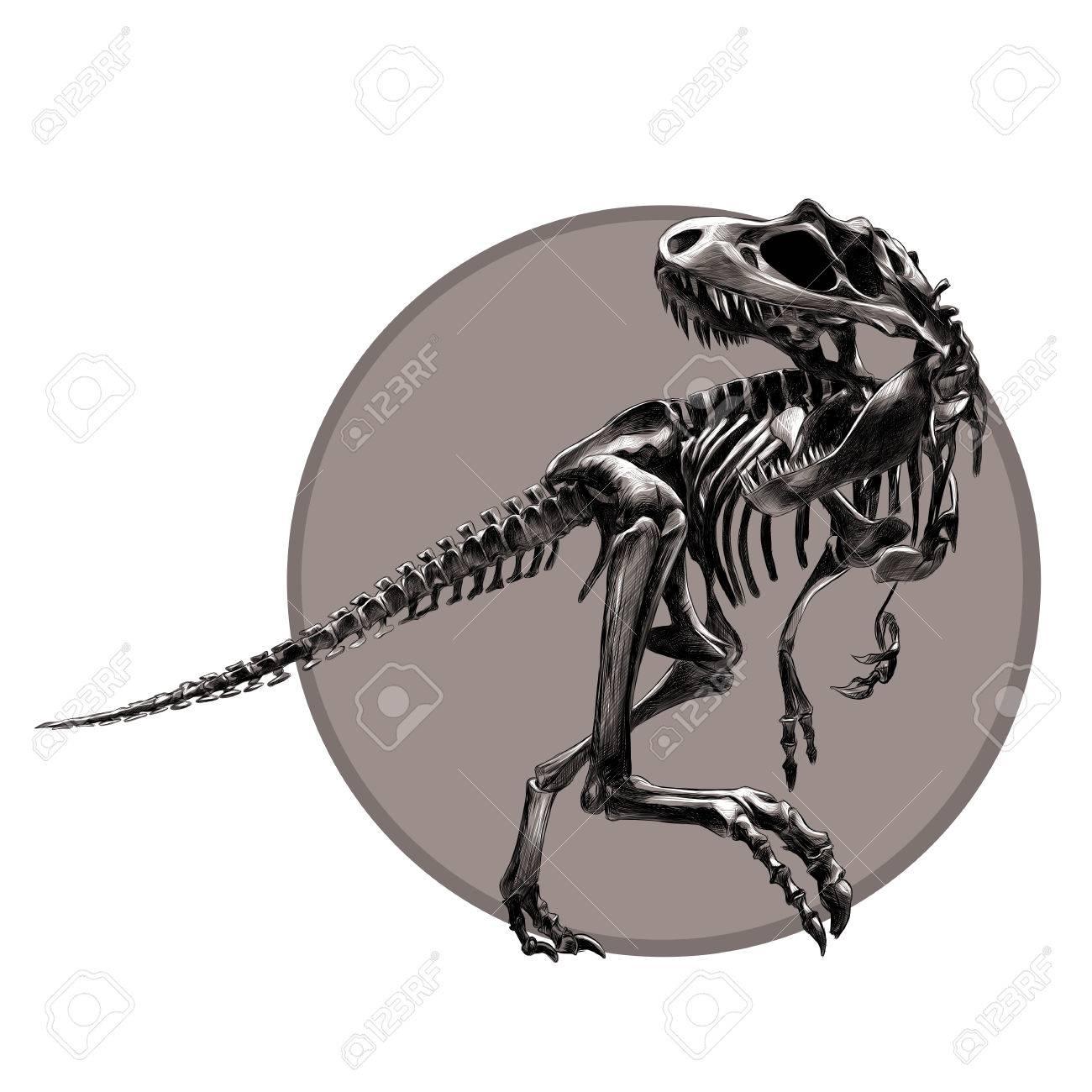 1300x1300 Dinosaur Skeleton Tyrannosaurus, Black And White Pattern On