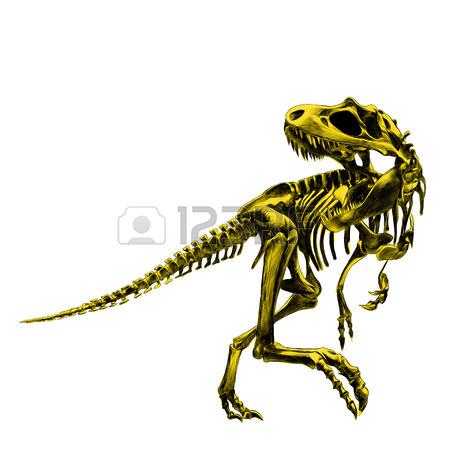 450x450 Dinosaur Skeleton Tyrannosaurus, Bone, Black And White Drawing