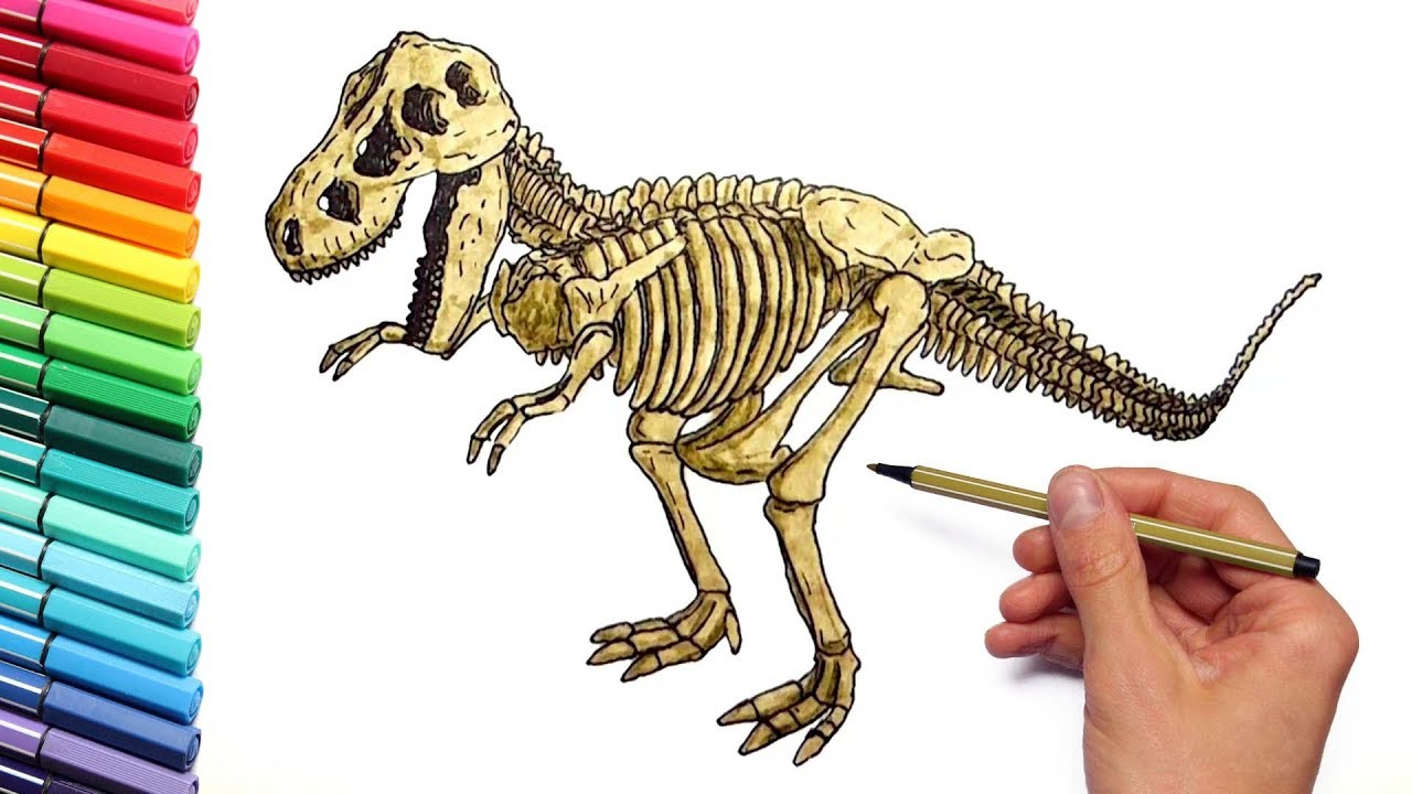 1280x720 Quick Dinosaur Skeleton Coloring Page Bones Free Printable Pages