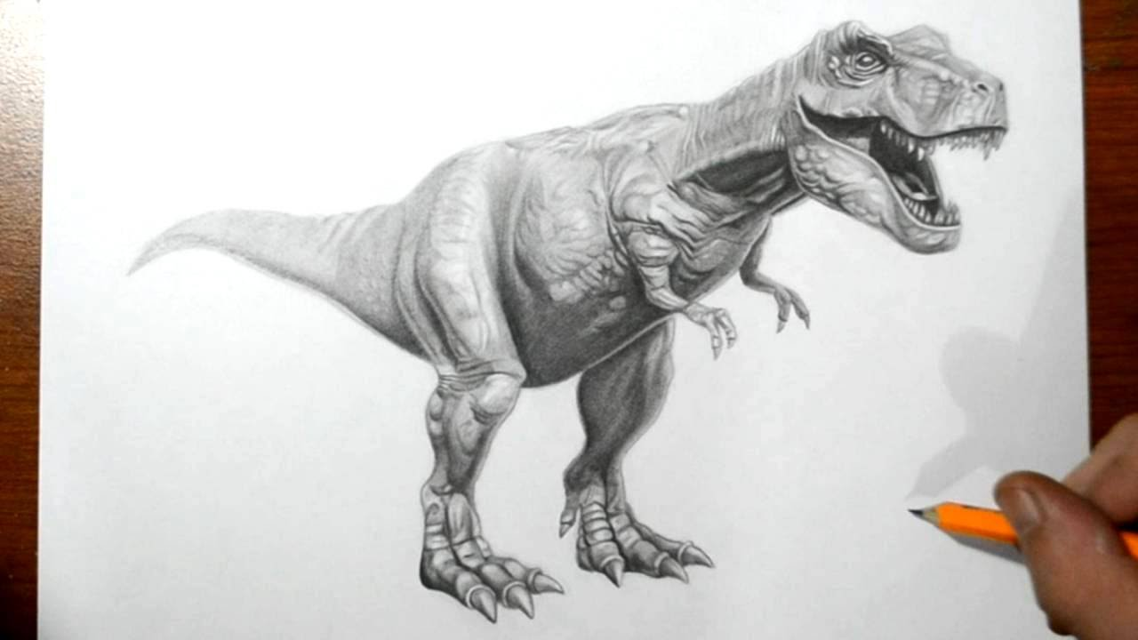 1280x720 How To Draw A T Rex Dinosaur